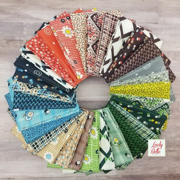 Winter Walk by Denyse Schmidt for Free Spirit Fat Quarter Bundle