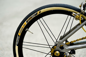 Limited Ed ORZ with CX RAY bladed spokes