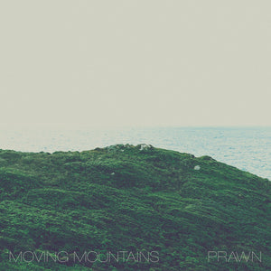 "Moving Mountains / Prawn ""Split"" 12"""