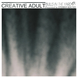"Creative Adult ""Bulls in the Yard"" 7"""