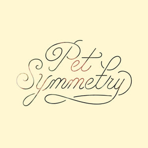 "Pet Symmetry ""Vision"" LP"