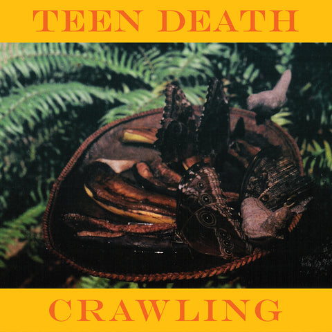 "Teen Death ""Crawling"" 7"""