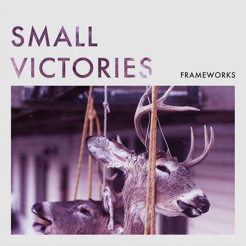 "Frameworks ""Small Victories"" 7"""