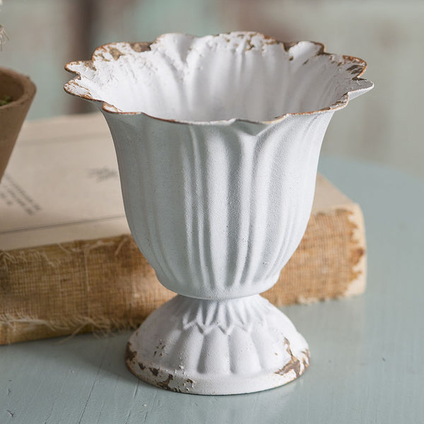 Small Scalloped Cup - Box of 4