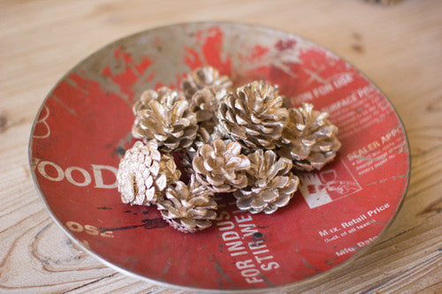 Bag Of Pine Cones - Champagne