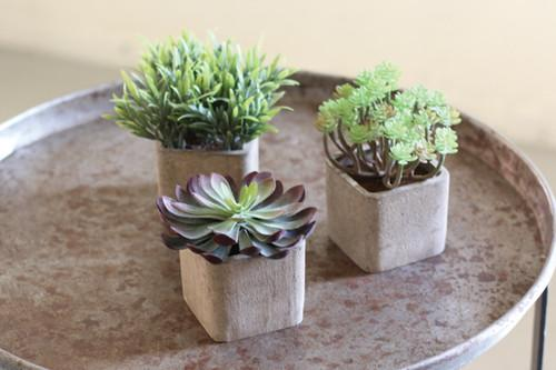 Set Of 3 Small Artificial Succulents In Square Pots