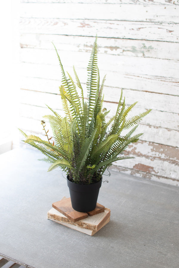 Artificial Potted Boston Fern