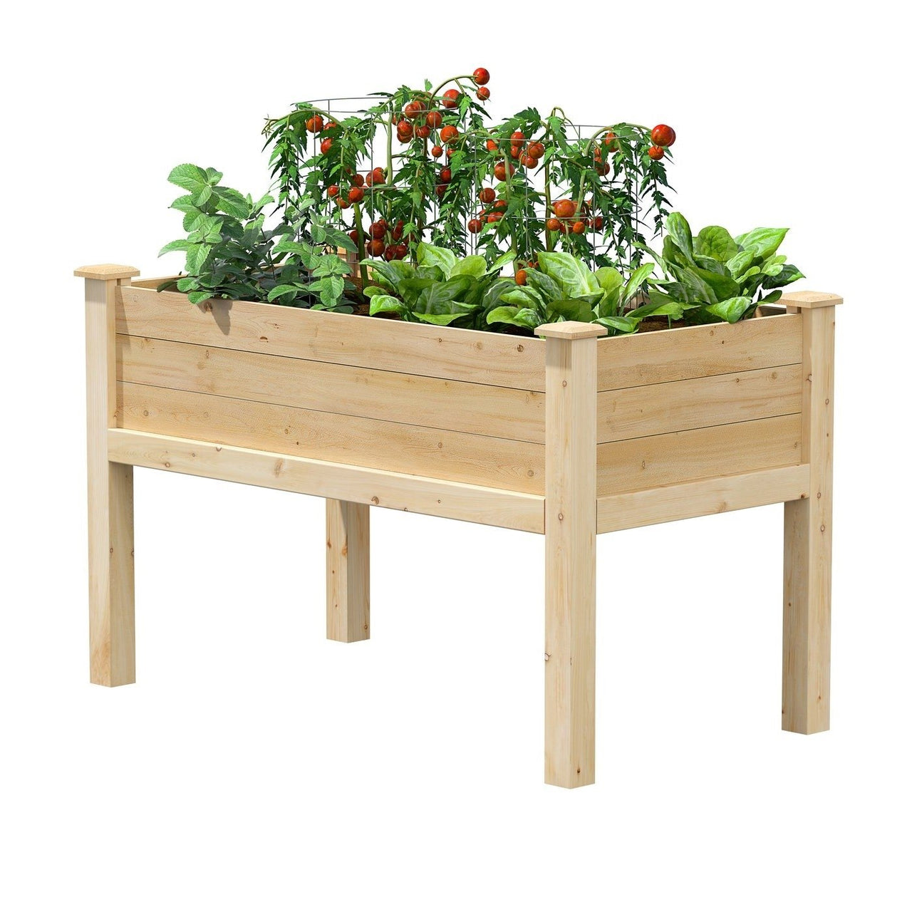 Farmhouse 24-in x 48-in x 31-in Cedar Elevated Victory Garden Bed - Made in USA