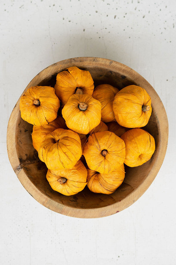 Bag Of 15 Dried Orange Miniature Pumpkins - Set Of 12