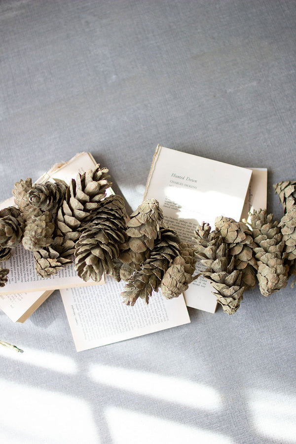 Frosted Green Pine Cone Garland - Set Of 6