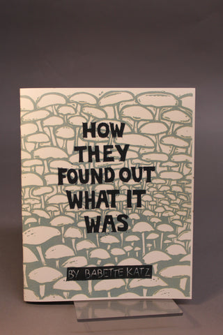 HOW THEY FOUND OUT WHAT IT WAS by Babette Katz
