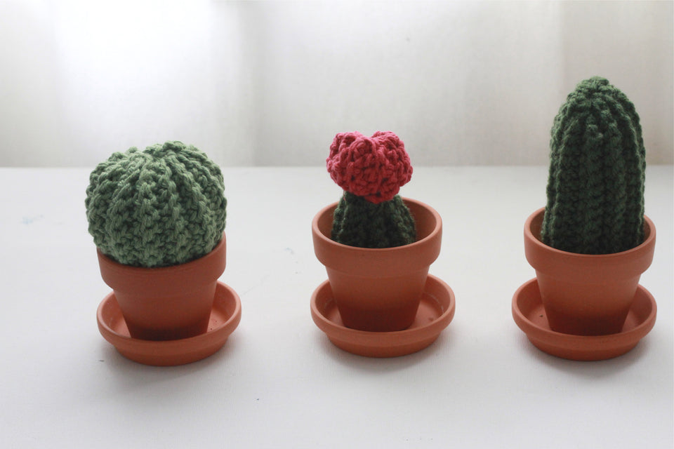 handmade crochet cactus collection holiday gift sets