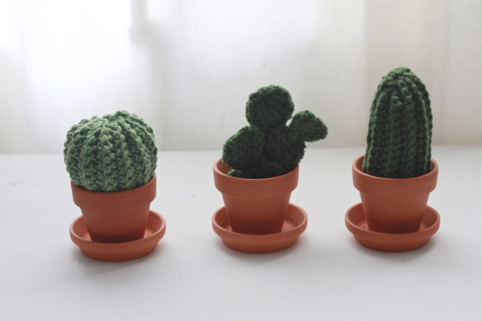 The Crochet Cactus Garden Handmade Set