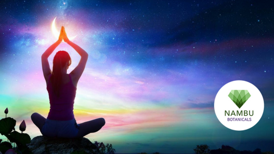 Heal Your Chakras to Change Your Karma - Color & Sound