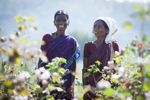 The Importance Of Fair Trade in Today's World
