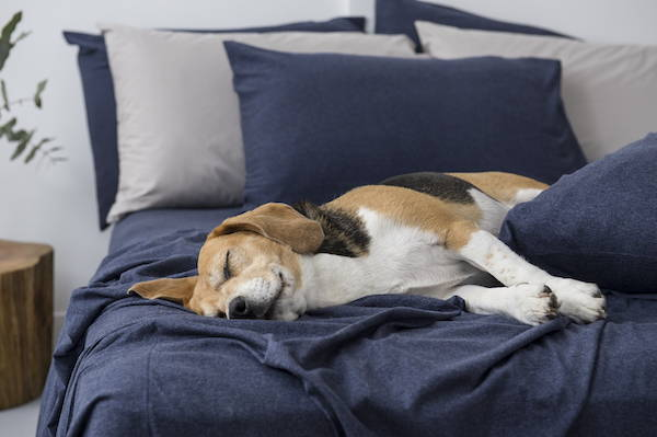 5 Ways To Sleep Better This Winter