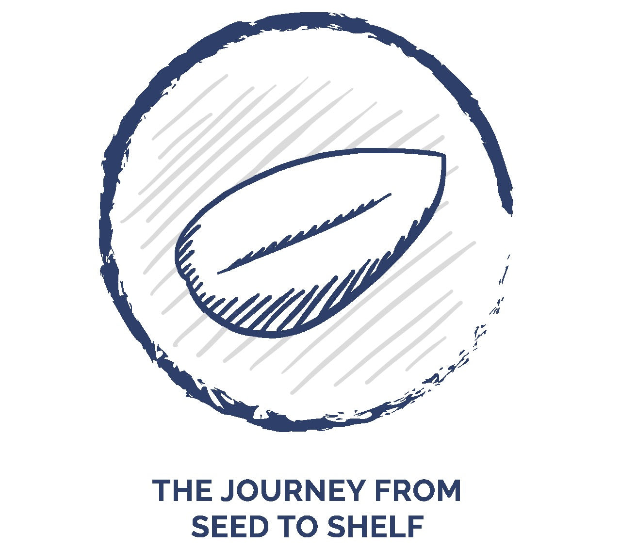 Bhumi Organic Cotton - The Journey From Seed To Shelf