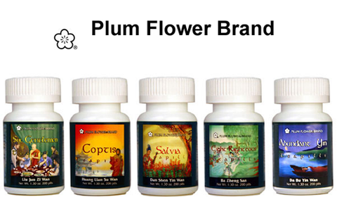 Plum Flower, Traditional Chinese Herbal Medicine