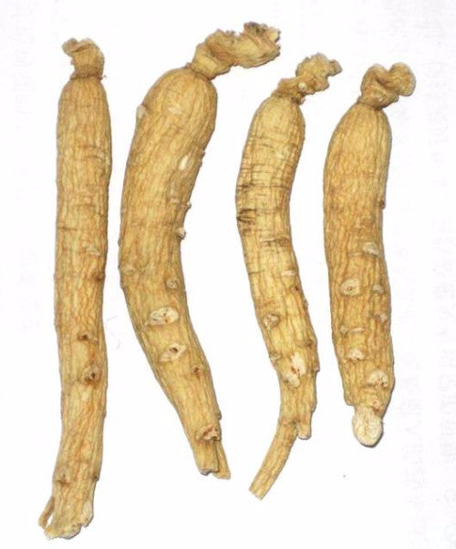 White Ginseng Whole Root