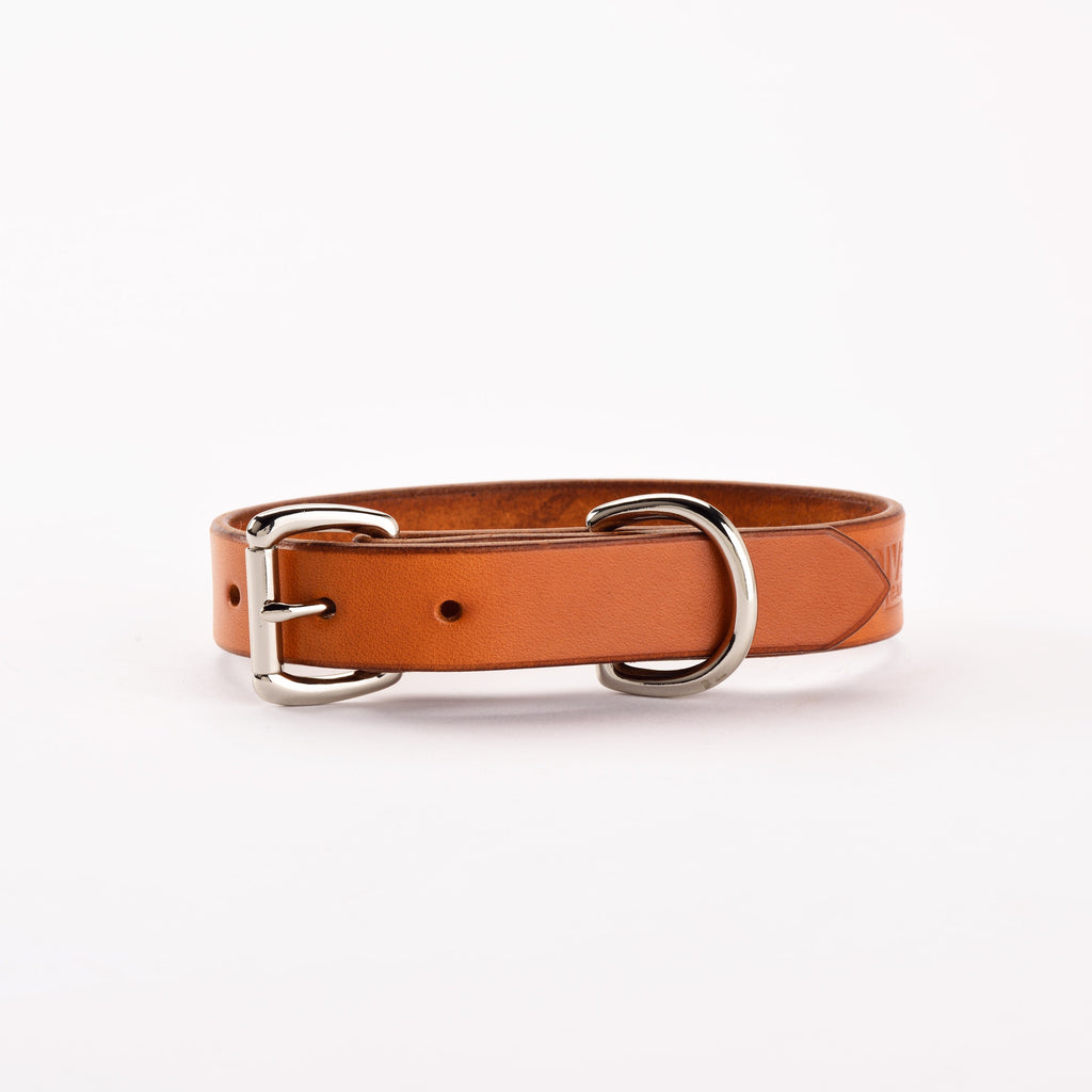 Saddle-Tan Hound Collar