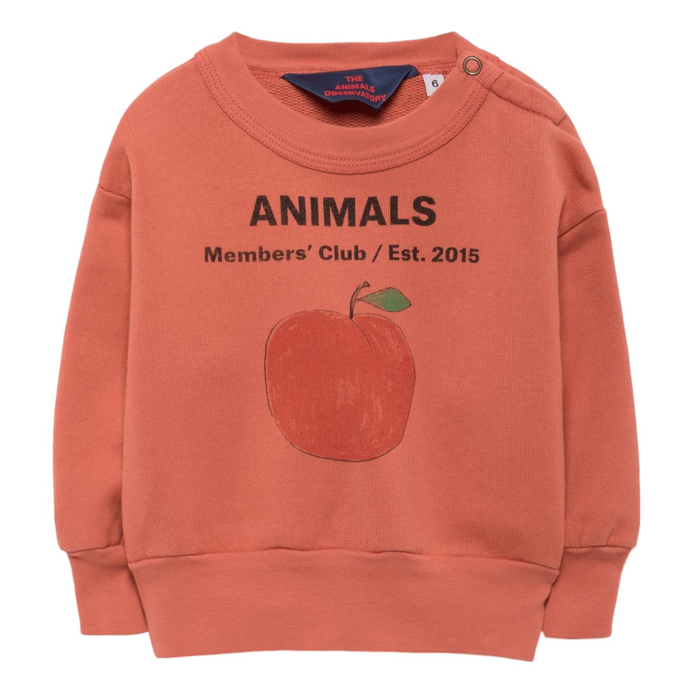 THE ANIMALS OBSERVATORY - Red Peach Bear Babies Sweatshirt