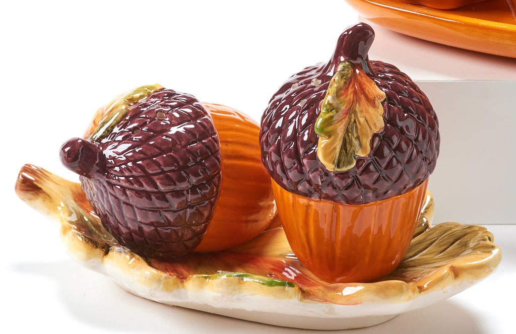 Fall Themed Salt & Pepper Shakers Giftcraft Acorn Squash Brookshire Boutique www.brookshireboutique.com