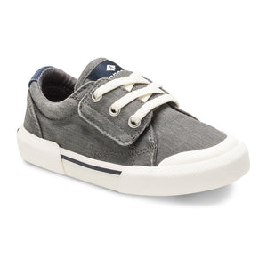 Sperry Striper II LTT Sneaker in Grey