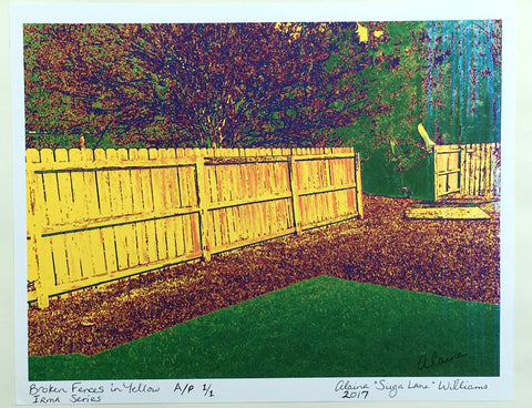 Broken Fences in Yellow Artist's Proof 1/1 From Irma Series 2017