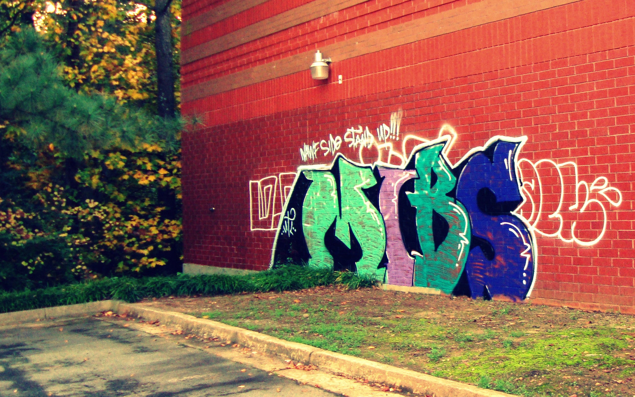 Surburban Graffiti #1 [Limited Edition 1/10] Digital Photography by Alaina Willi