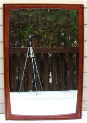 Rare Artisan Sculpted Walnut and Pecan MID-CENTURY VINTAGE Mirror