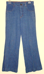 Vintage Wild Oats Retro High Waist Blue Jeans Ornate Design Like Sz 6 W 29-30