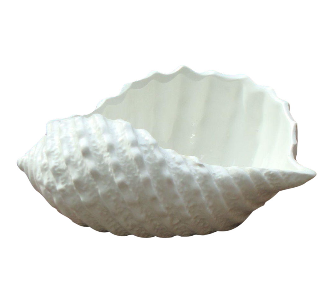 VINTAGE ANTIQUE STAFFORD WHITE ITALIAN PORCELAIN SEASHELL CONCH MADE IN ITALY
