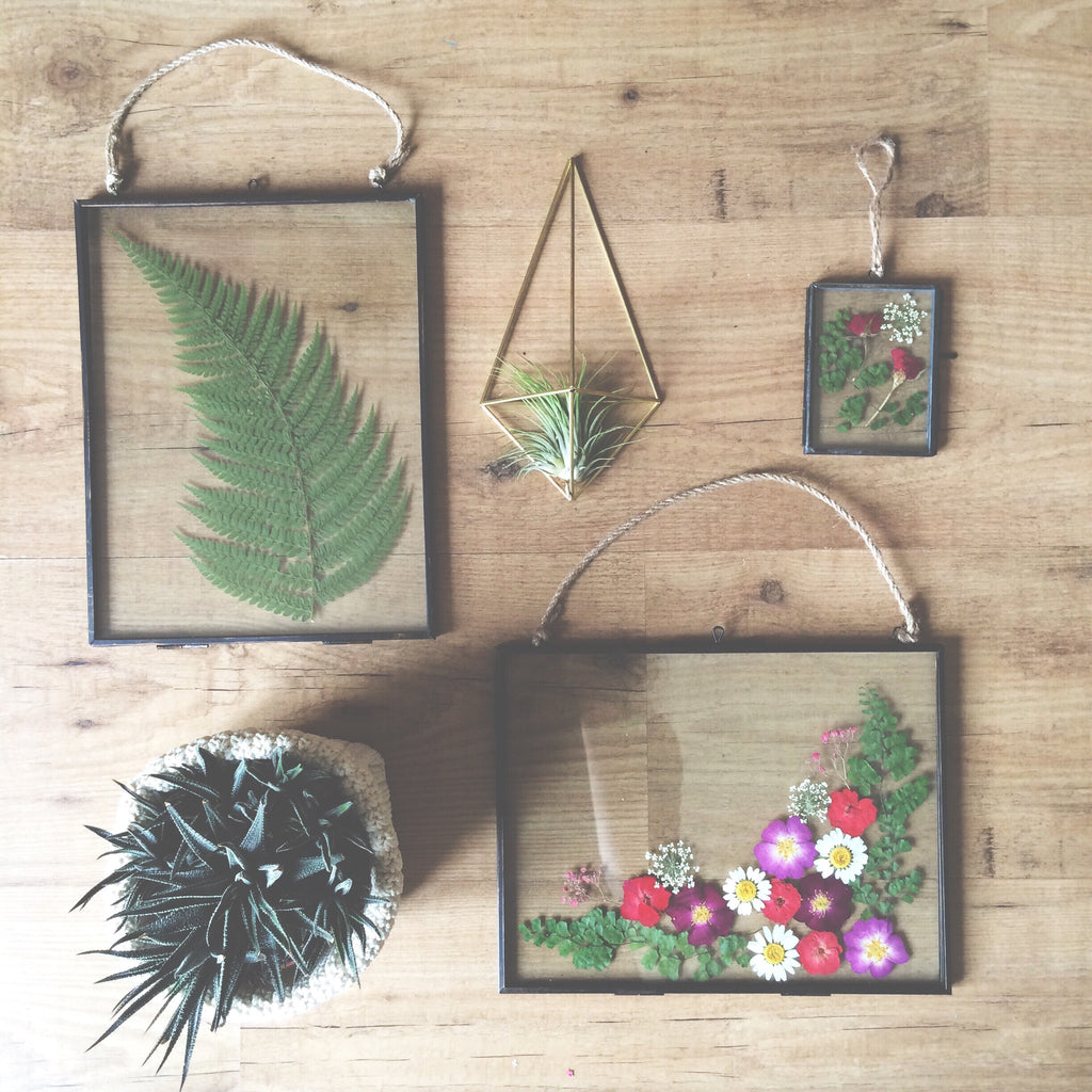 Metal and glass hanging frame