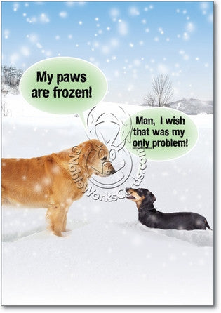 My Paws Are Frozen Christmas Card - Sour Sentiments   - 1
