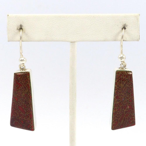 Fossilized Dinosaur Bone Earrings