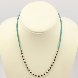 Turquoise and Jet Necklace