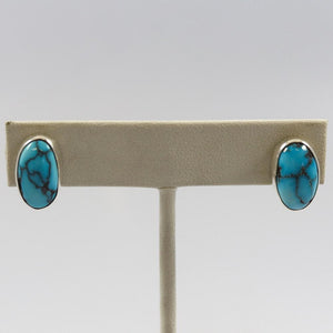Egyptian Turquoise Earrings