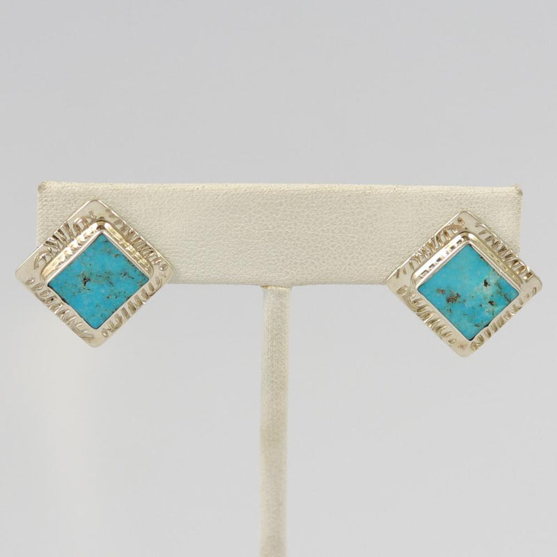 Royal Beauty Turquoise Earrings