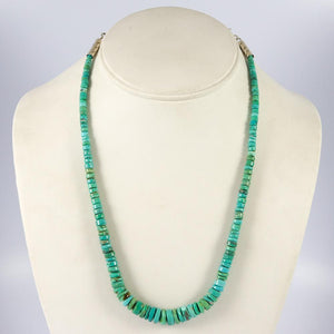 Evans Turquoise Necklace