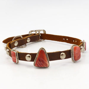 Spiny Oyster Shell Dog Collar