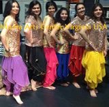 Bollywood Adult Group Dance Lessons  -Sterling, South Riding and Ashburn, Virginia