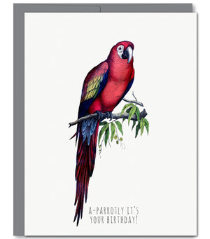 Parrot Birthday Greeting Card | Sylvan Gate Design
