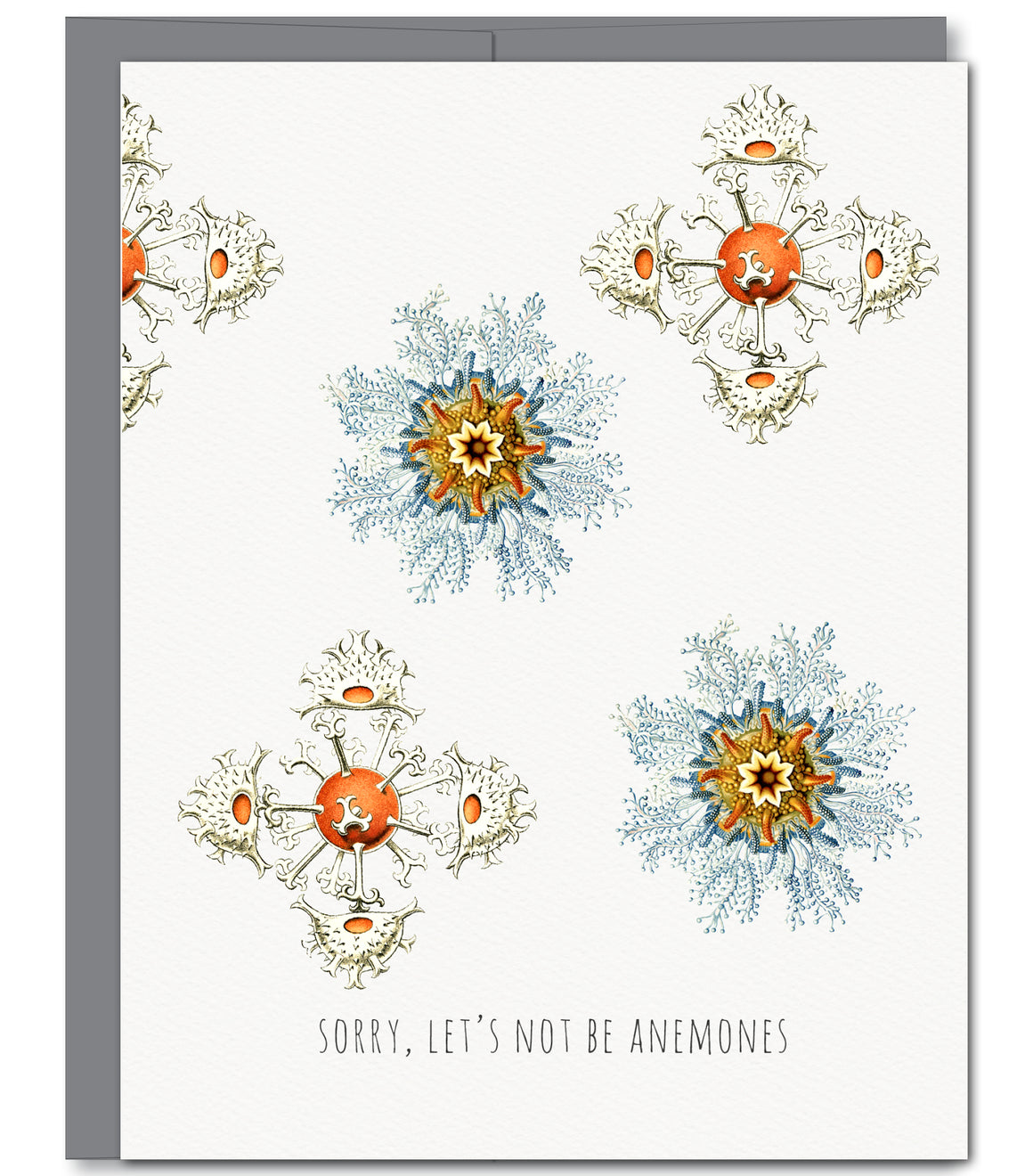 Sea Anemone Sorry Glitter Greeting Card | Sylvan Gate Design