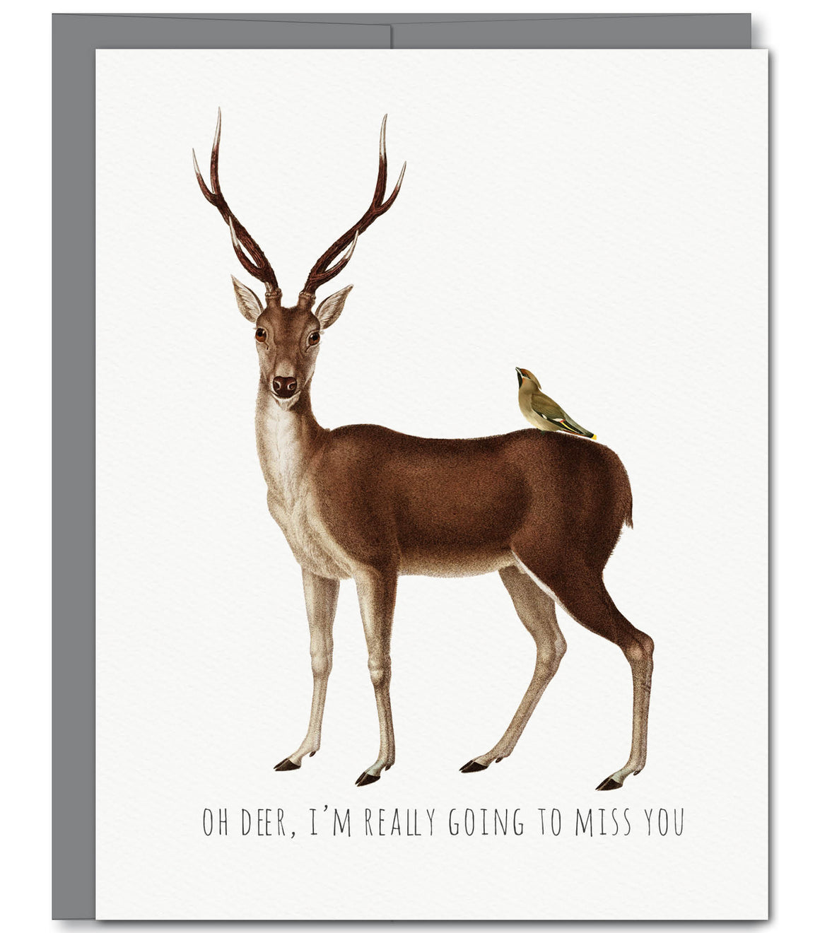 Oh Deer Miss You Glitter Greeting Card | Sylvan Gate Design