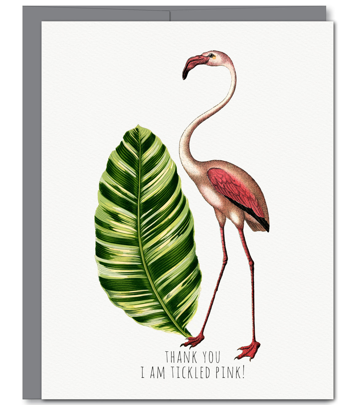 Flamingo Thank You Glitter Greeting Card | Sylvan Gate Design