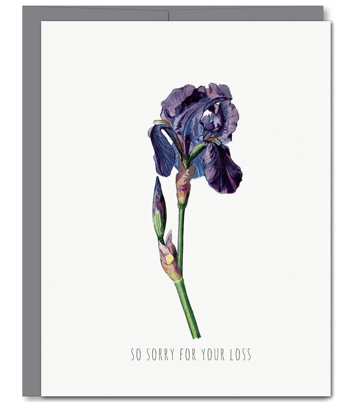 Iris Sympathy Glitter Greeting Card | Sylvan Gate Design