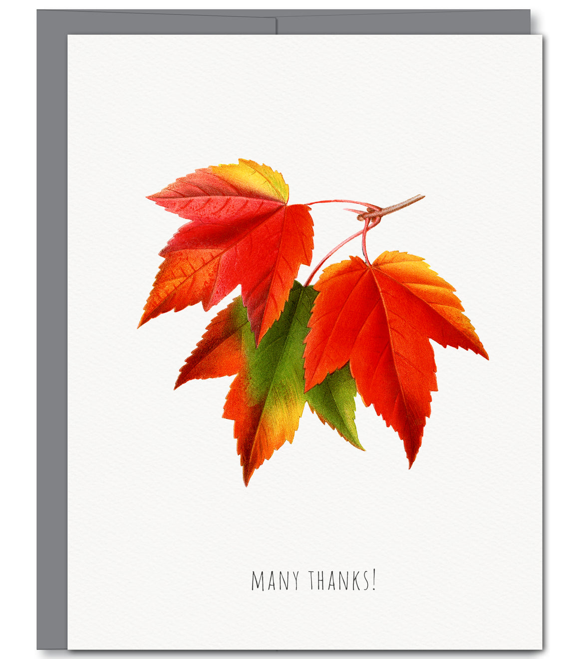 Autumn Leaves Thank You Glitter Greeting Card - Sylvan Gate Design