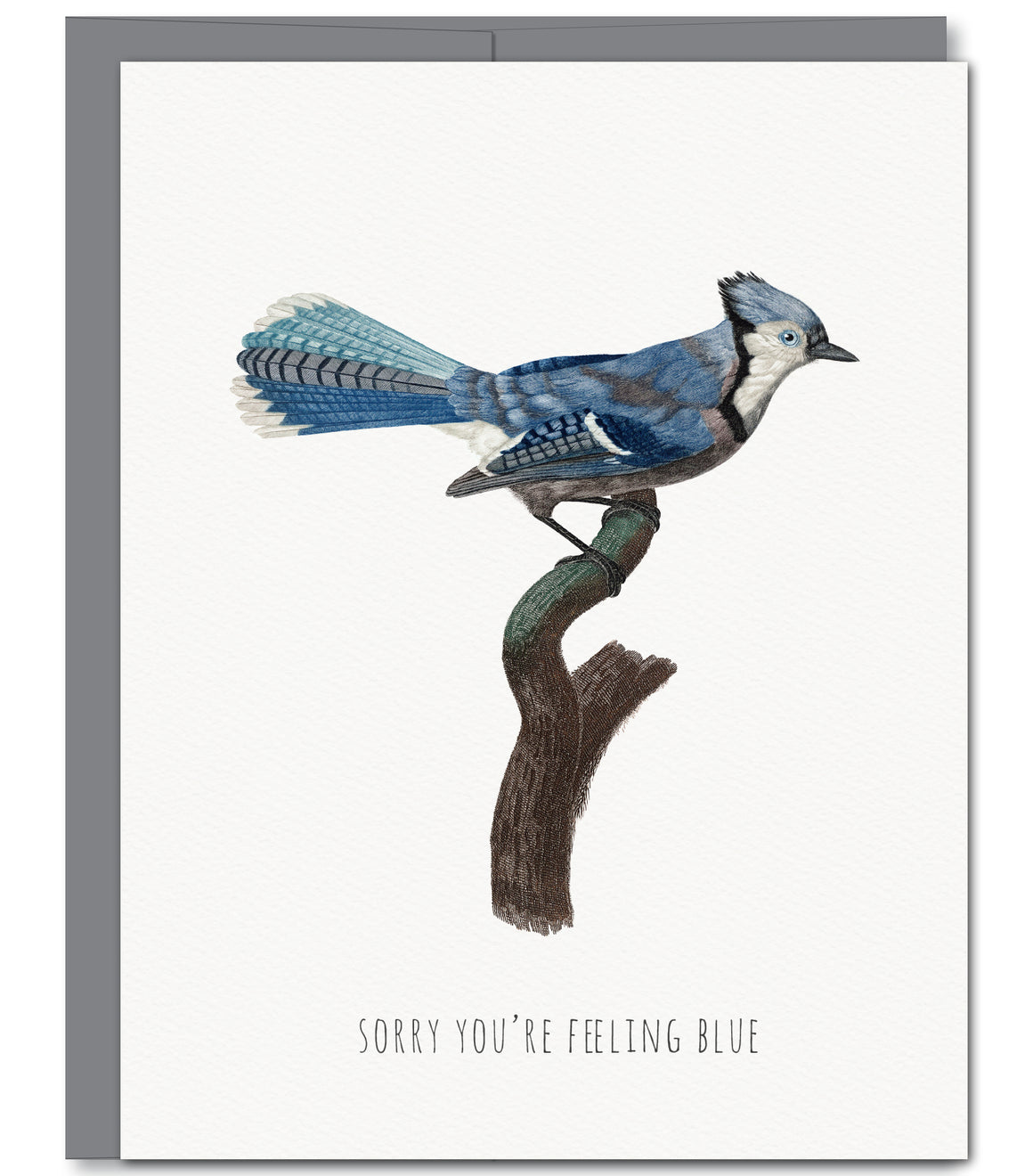 Feeling Blue Friendship Everyday Glitter Greeting Card | Sylvan Gate Design