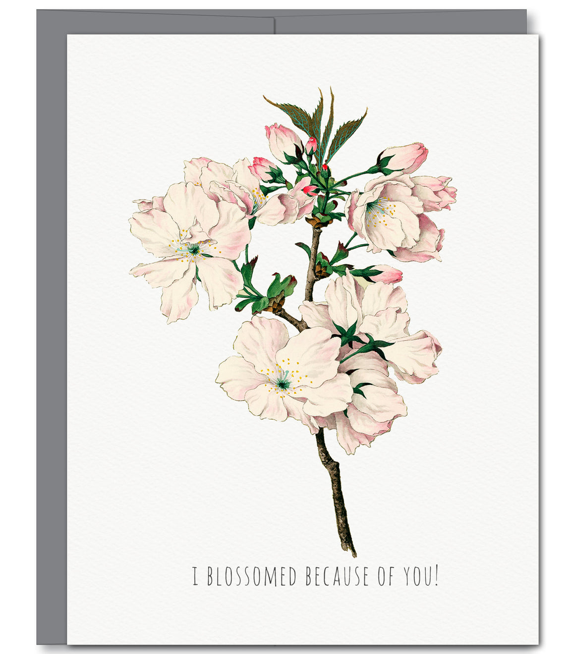 Cherry Blossom Mothers Day Glitter Greeting Card | Sylvan Gate Design