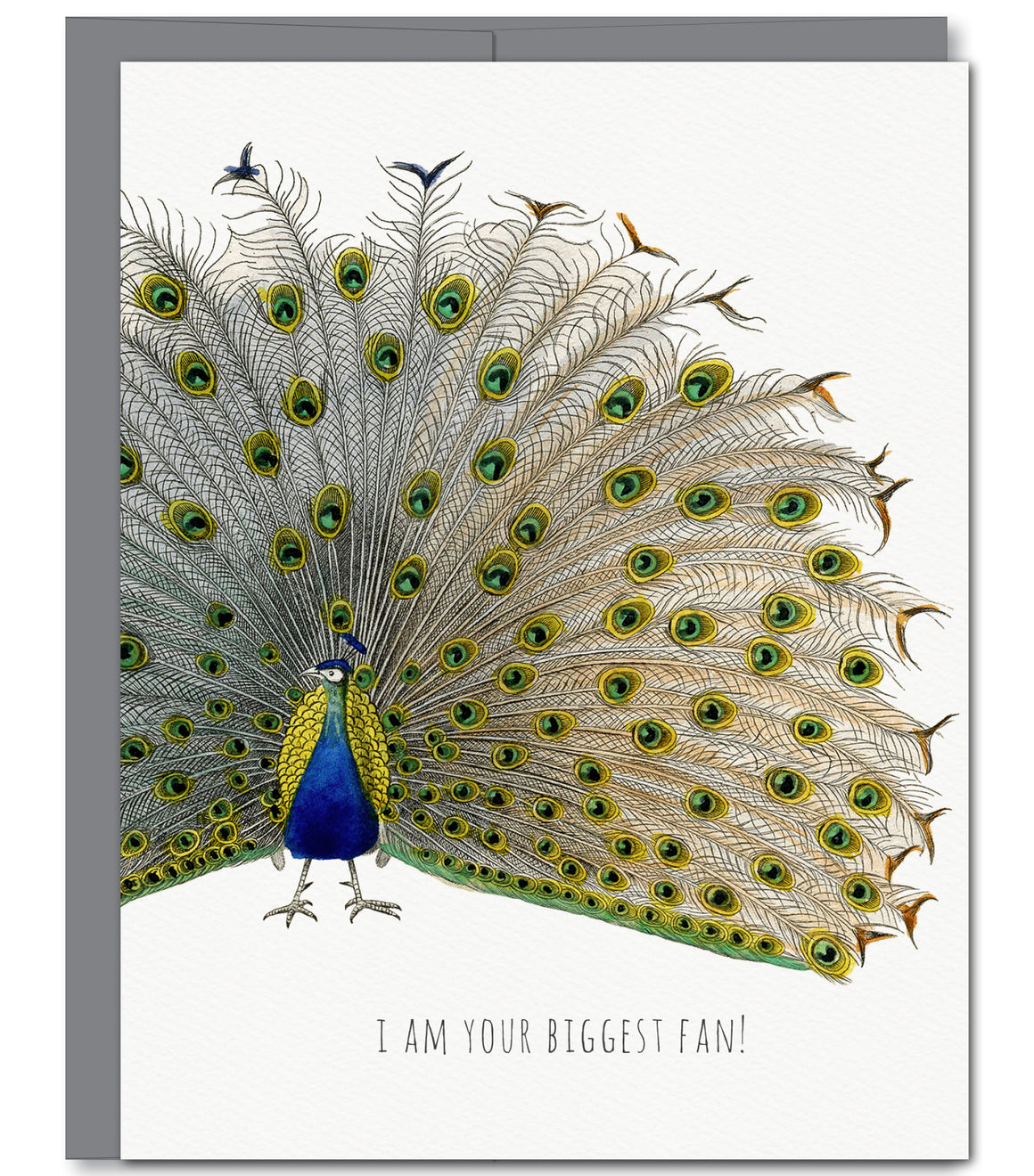 GC482 - Peacock Fan Glitter Greeting Card